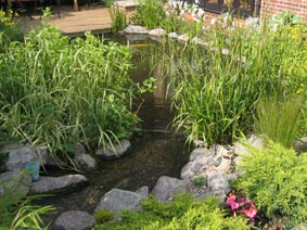 Medium Ornamental Pond (7.5 sq.m)